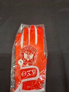 DST Golf Glove